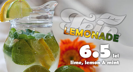 Tein Lemonade flyer graphic design